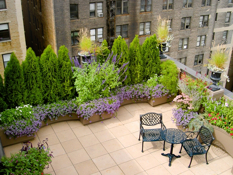 Upper West Side Roof Terrace Gresham Lang Garden Design Llc