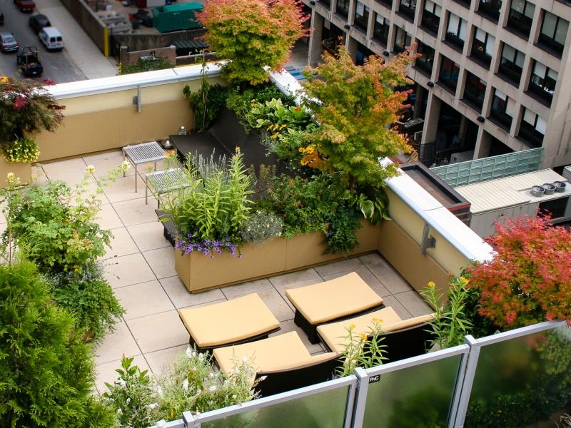flower district terrace